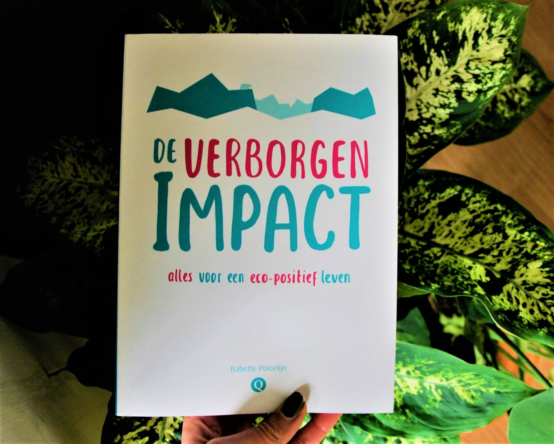 Review: De Verborgen Impact