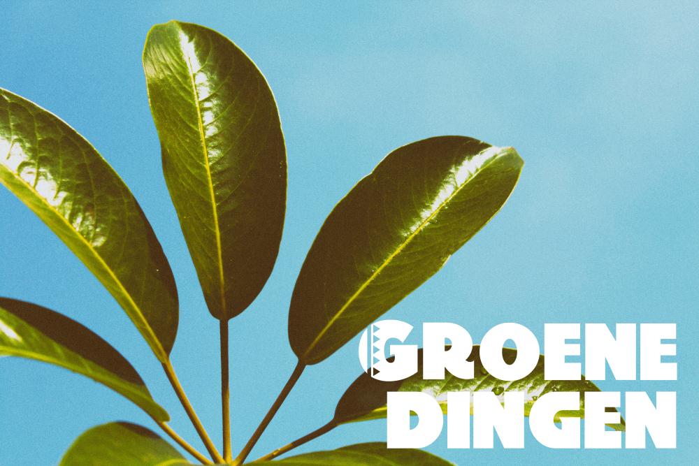 Groene Dingen #10